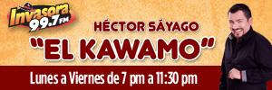 kawamo5.jpg