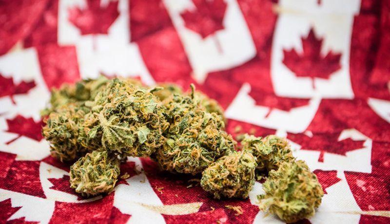 Canadá| Se legalizó el uso recreativo del cannabis