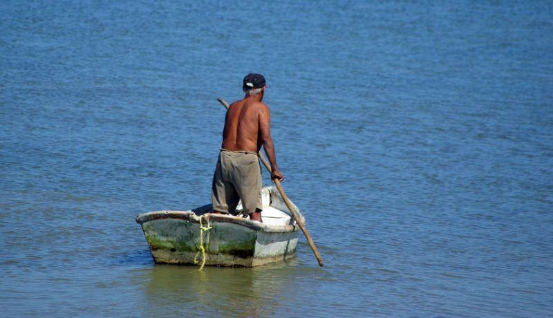 Pescadores de San Felipe podrán capturar camarón a partir de octubre