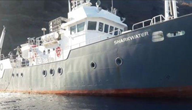 """Resultado de imagen para embarcación mayor denominada """"Shark Water"""