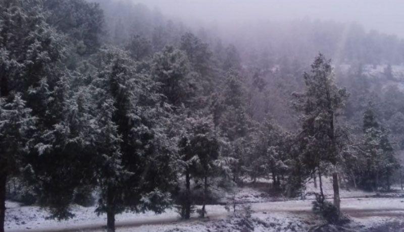 Se espera fuerte descenso de temperatura en el norte del país