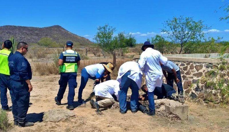 Buscadoras ubican 2 cadáveres; FGJE hará trabajos de identificación