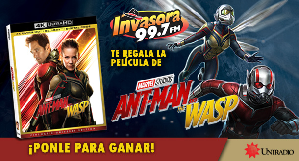 ANT-MAN AND THE WASP DVD + BLU-RAY + COPIA DIGITAL