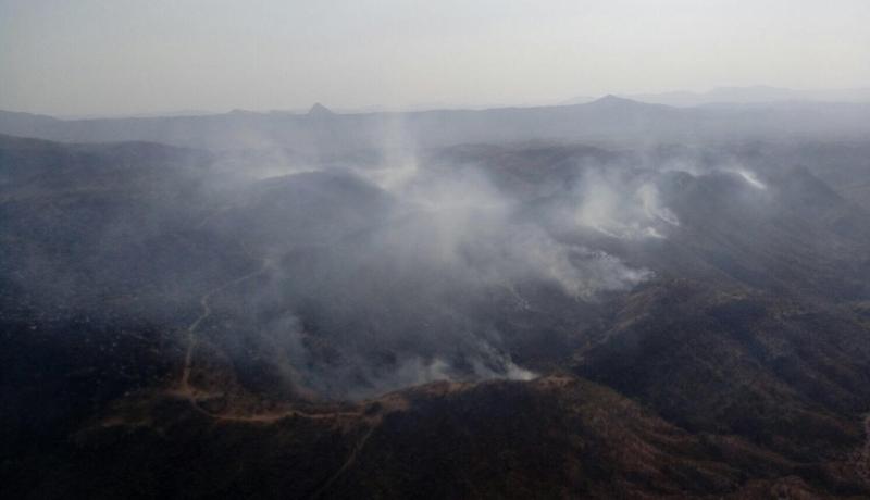 Combaten incendio forestal en Casas