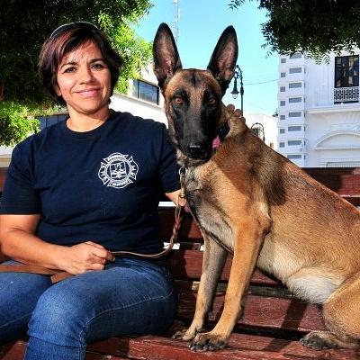 Picks up Fire unit canine rescue in Hermosillo - Uniradio - Uniradio Informa 1