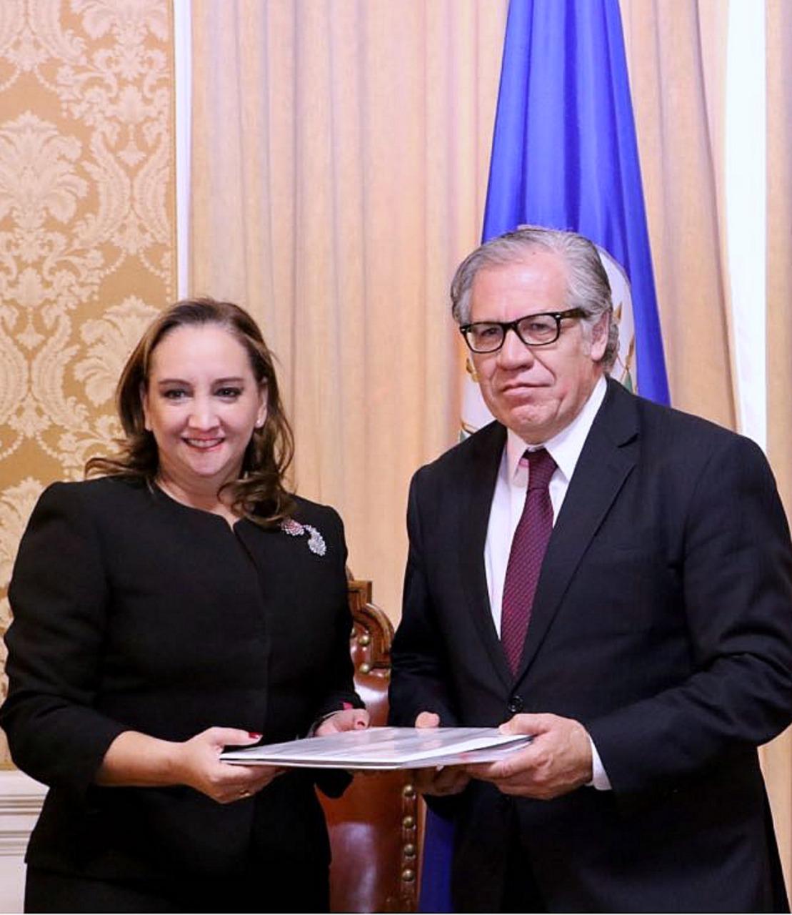 Anaya busca 'fuero de facto' con denuncia ante OEA, acusa Ruiz Massieu